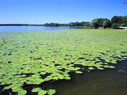 Jezioro Drwęckie w Ostródzie