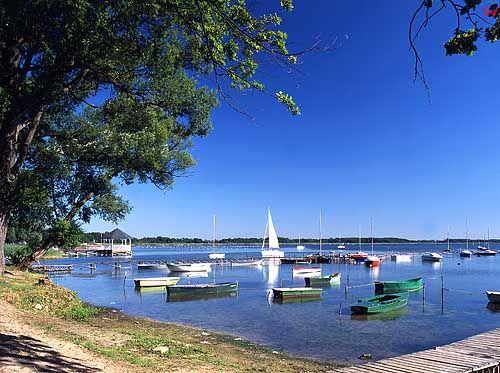 Jezioro Miedwie.