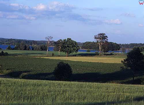 Jezioro Płaskie. Okloica Jerzwałda