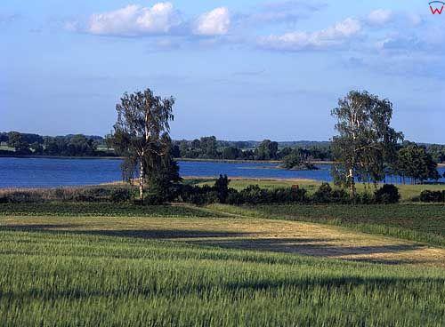Jezioro Płaskie. Okloica Jeżwałda