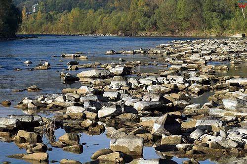 Dunajec, Beskid Wyspowy