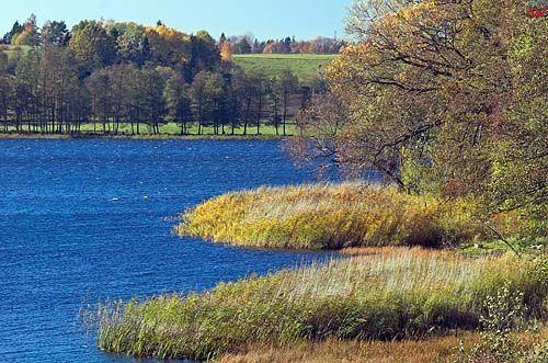 Jezioro Warpuńskie, warm-maz