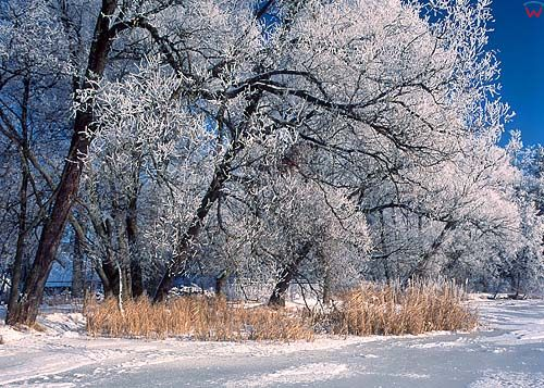 Zima, warmia-mazury