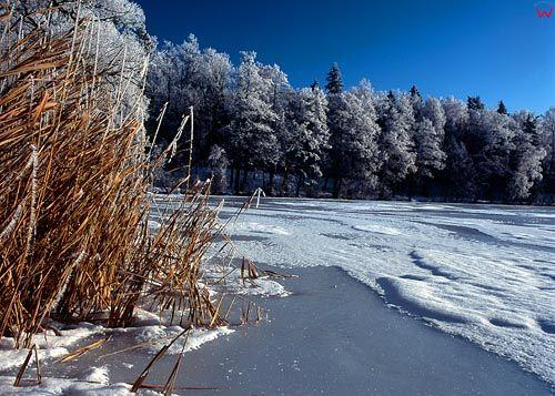 Jezioro Jamno, kolica Mrągowa.