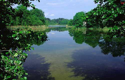Jezioro Studzieniczne warm-maz