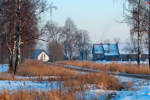 PL, warm-maz. Zulawy Wislane, okolica Kepy Rybackiej.