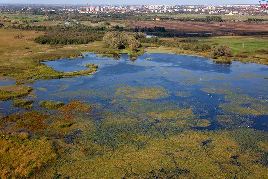 Lotnicze, EU, PL, warm-maz. Zulawy Wislane, jezioro Druzno, panorama na Elblag.