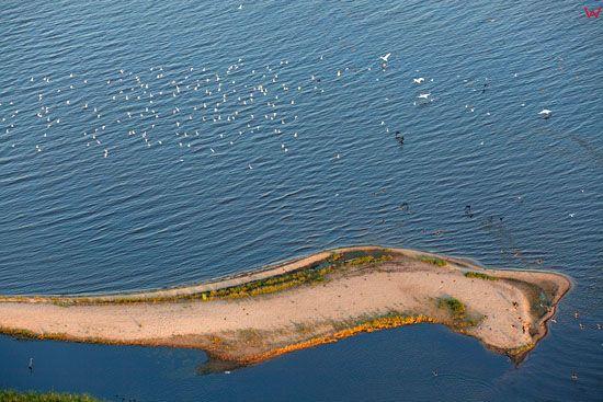 Zatoka Rewska wyspy z ptactwem. EU, Pl, Pomorskie. LOTNICZE.