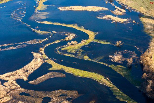 Dolina rzeki Drwecy. Wiosenne rozlewiska w okolicy Topiele. EU, PL, Kujawsko - Pomorskie. Lotnicze