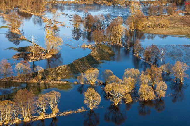 Brodnicki PK, wiosenne rozlewiska rzeki Drwecy, okolica Nowego Dworu. EU, PL, Kujawsko - Pomorskie. Lotnicze