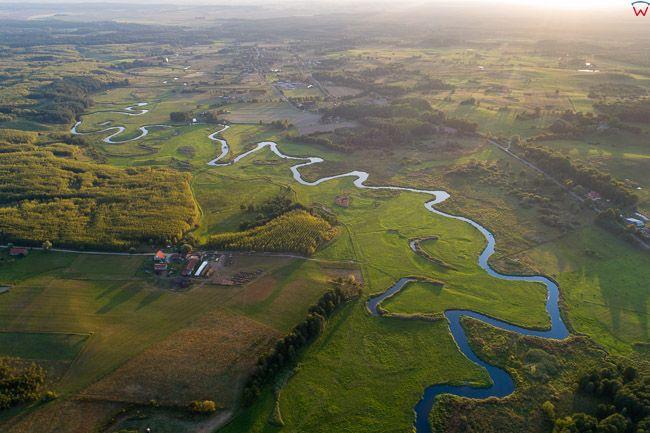 Meandry rzeki Lyna
