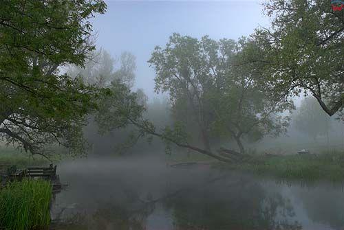 Mgła nad rzeką Krutynia w Mazurskim Parku Krajobrazowym.