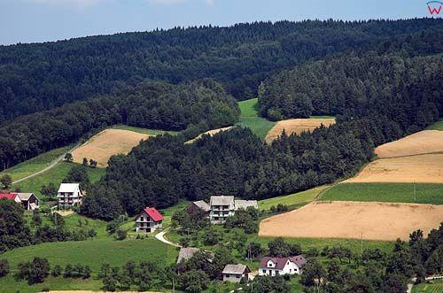 Beskid Wyspowy, okolica wsi Limanowa