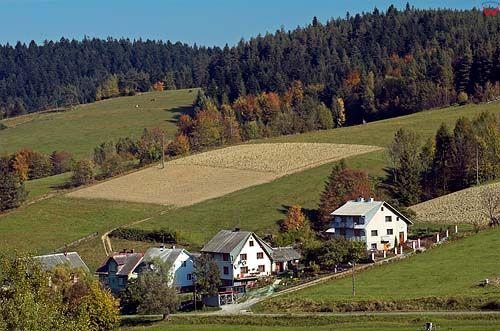 Krzyżówka-wieś w Beskidach