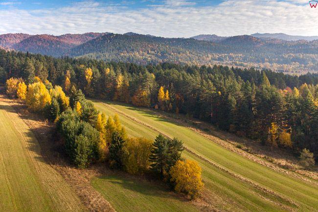 Gorce, okolica Mniowy. EU, Pl, Malopolska. Lotnicze.