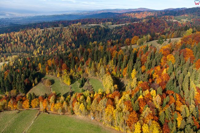 Gorce, okolica Mizerna. EU, Pl, Malopolska. Lotnicze.