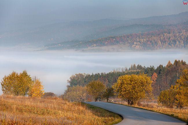 Pieniny, okolica Czorsztyna. EU, Pl, Malopolska.