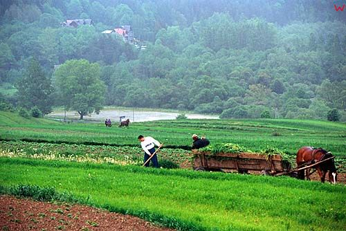 Pieniny, rolnicy
