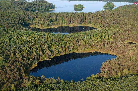 Lotnicze, Pl, warm-maz. Mazurski Park Krajobrazowy. Rezerwat Krolewska Sosna.