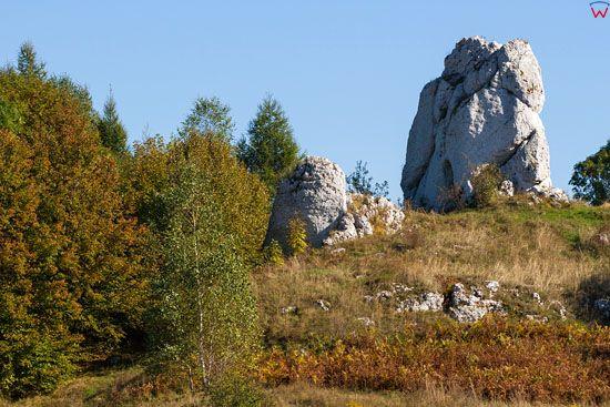 Jura Krakowsko - Czestochowska, skaly w okolicy Pilicy, EU, Pl, Slask, LOTNICZE.