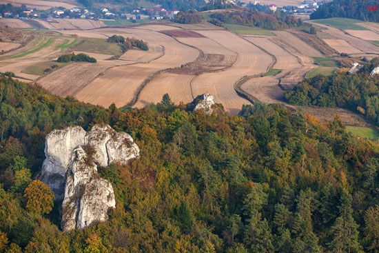 Jura Krakowsko - Czestochowska, Park Krajobrazowy Orlich Gniazd, Skaly Zegarowe. EU, Pl, Slaskie. LOTNICZE.