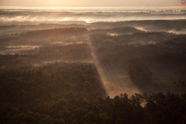 Wdecki Park Krajobrazowy, widok poludniowej czesci. EU, PL, Kujawsko-Pomorskie.