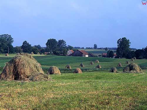 Sianokosy, okolica Lidzbarka Warmińskiego