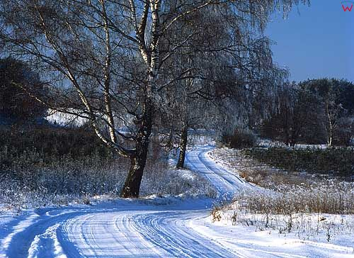 Zima okolica wsi Kochanówka gm. Lidzbark Warmiński