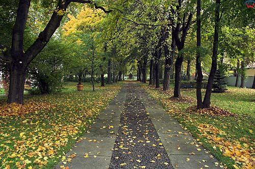 Szczyrzyc. Park na terenie klasztoru, małopolska