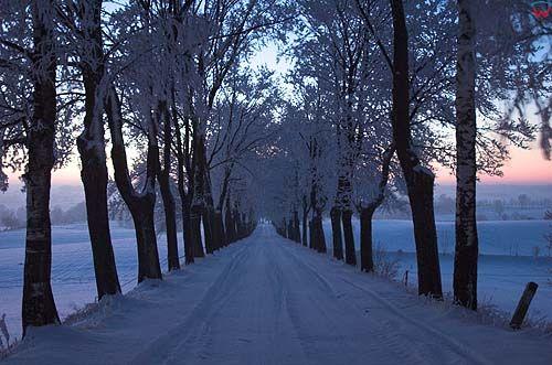 Noc, zima