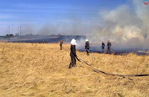 Strażacy przy gaszeniu palącej się trawy