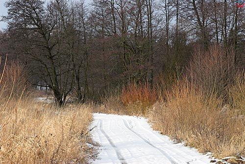 Warminsko-Mazurskie, pejzaz zimowy.