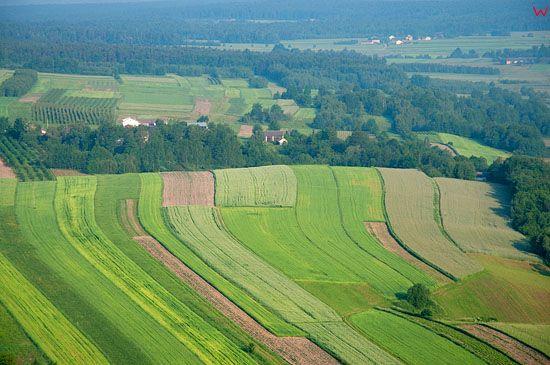 LOTNICZE, PL, swietokrzyskie, pejzaz okolicy wsi Iwaniska.