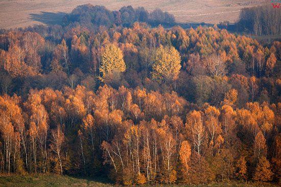 Lotnicze, EU, Pl, warm-maz. Jesien na Warmii.