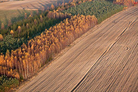Lotnicze, EU, PL, warminsko - mazurskie. Jesien na Warmii, okolica Klebowa.