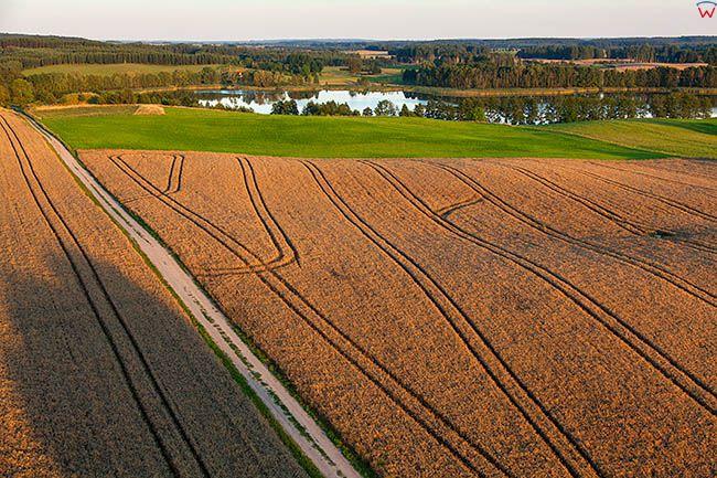 Orlo, panorama rolnicza okolicy Rynu. EU, PL, Warm-Maz. Lotnicze.