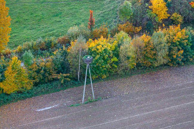 Jesien na Warmii 16.10.2017 r, okolica Lidzbarka, w gnieĹşdzie pozostal bocian bialy. EU, Pl, warm-maz. Lotnicze.