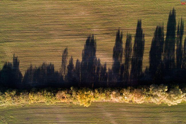 Zulawy, panorama w okolicy Elblaga. EU, PL, warm-maz. Lotnicze