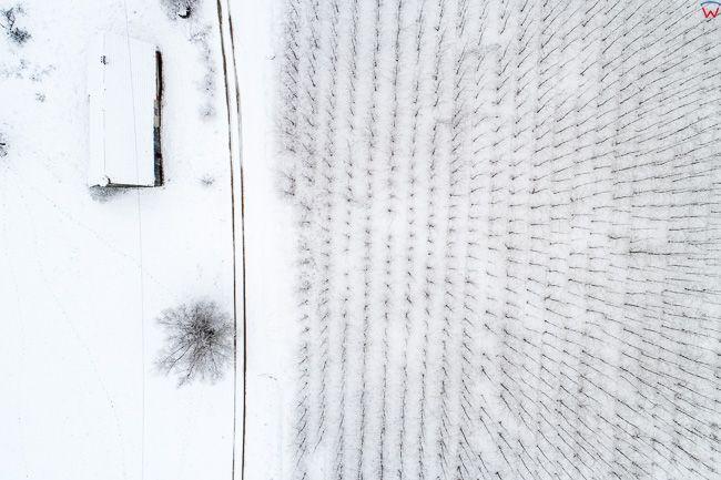 Laniewo, domostwo usytuowane na obrzezu lasu w zimowej scenerii. EU, PL, warm-maz. Lotnicze.