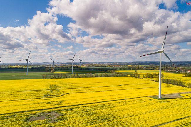 Bystra k. Gdanska, silownie wiatrowe na tle rzepaku. EU. PL,. EU, Pl, warm-maz. Lotnicze