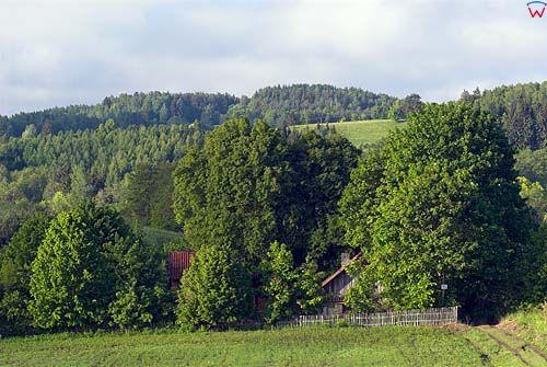 Morena w okolicy Mrągowa.