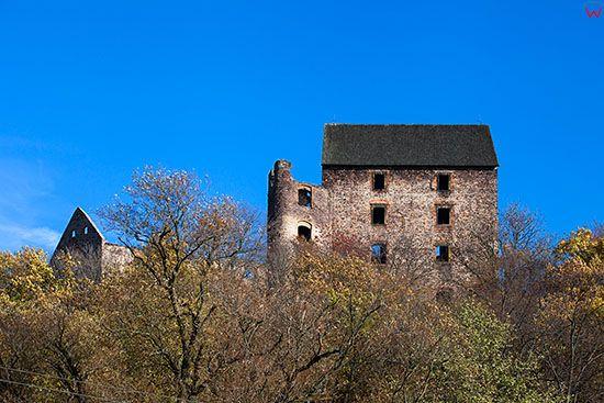 Zamek Swiny. EU, PL, Dolnoslaskie.
