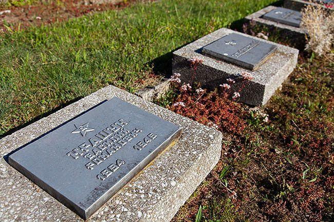 Legnica, cmentarz Zolnierzy Radzieckich w wydzielonej czesci cmentarza komunalnego. EU, Pl, Dolnoslaskie.