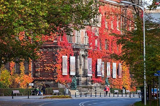 Wroclaw, fasada budynku Muzeum Narodowego. EU, PL, Dolnoslaskie.