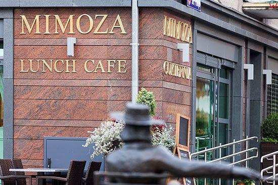 Swiebodzin, laweczka Czeslawa Niemena na tle Restauracji Mimoza na Placu Jana Pawala II. EU, Pl, Lubuskie.