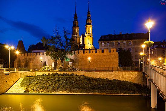 Opole, panorama na Katedre od strony Mlynowki. EU, PL, Opolskie.