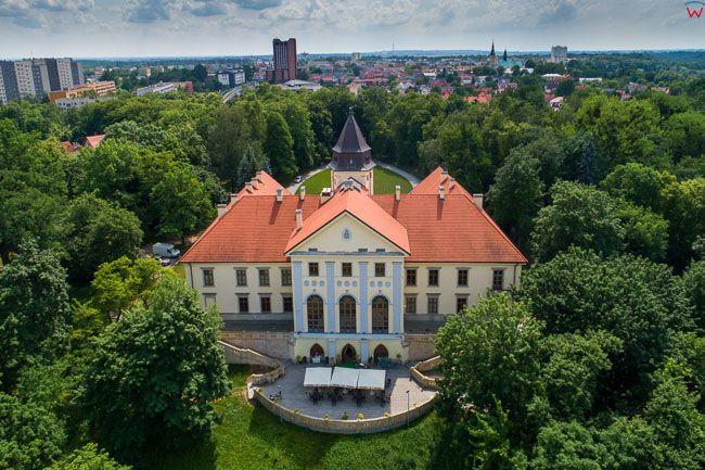 Tarnobrzeg, Zamek Tarnowskich