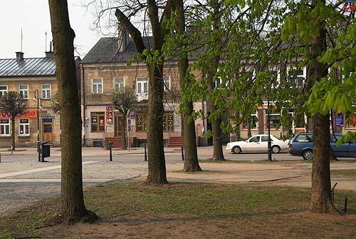_W060422 park miejski w Augustowie-centrum
