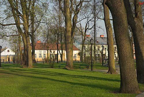 _W060250 park w centrum Suwałk