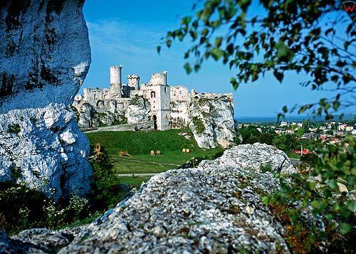 Zmek w Ogrodzieńcu